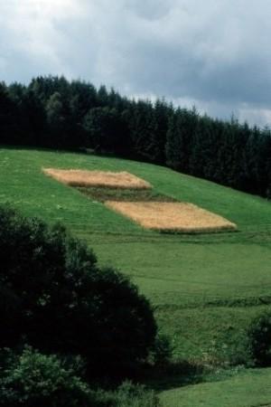 Aegertenwirtschaft. Quelle: http://pan.cultland.org/cultbase