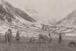 Hager, P.K.: Frühjahrbestellung nach Ausapern im Gebirge, 1916