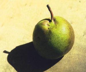 Bergamotta d'Esperen, fonte: P. Odorizzi: Profumi e sapori perduti - Il fascino della frutta antica Vol.II (2005)