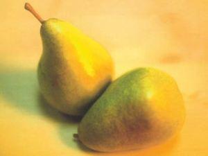 Butirra Clairgeau, fonte: P. Odorizzi: Profumi e sapori perduti - Il fascino della frutta antica Vol.II (2005)