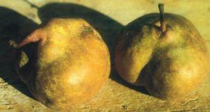 Chiappona, fonte: P. Odorizzi: Profumi e sapori perduti - Il fascino della frutta antica Vol.II (2005)