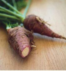 Gniff; Quelle:  Das Lexikon der alten Gemüsesorten (2014)