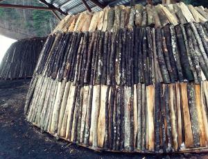 Holzaufbau ca 60 ster (Foto Fam. Renggli, Bramboden)