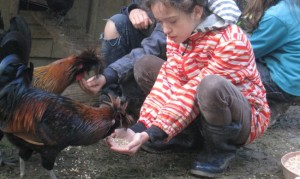 Kinderfreundliches Huhn