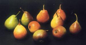 Moscatella Rossa, fonte:  P. Odorizzi: Profumi e sapori perduti - Il fascino della frutta antica Vol.II (2005)