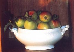 Renetta del Canada, fonte: P. Odorizzi, S. Abram: Profumi e sapori perduti - Il fascino della frutta antica Vol. I (2001)