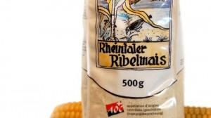 Rheintaler Ribel