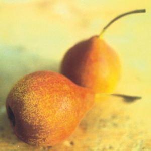 Rusin, fonte: P. Odorizzi: Profumi e sapori perduti - Il fascino della frutta antica Vol.II (2005)