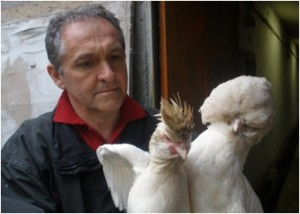 Vergleich Polverara (links) und Paduaner (rechts), Foto gru